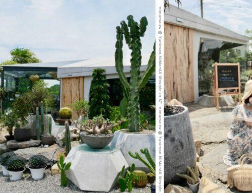 酉Succulent & Artwork ▎彰化田尾熱門打卡的藝術造景~捌程景觀