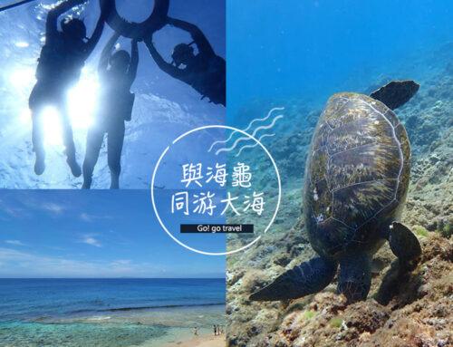 小琉球美人沙灘浮潛:沒有最美海底世界但有療癒海龜陪你游泳!