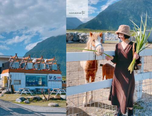 花蓮崇德瑩農場花了最貴的門票、一秒來到紐西蘭,親子網美景點