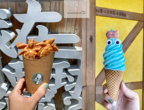 小琉球必吃冰品大集合~冰箱冰舖焦糖腰果沒吃到、挖到可愛的海龜霜淇淋